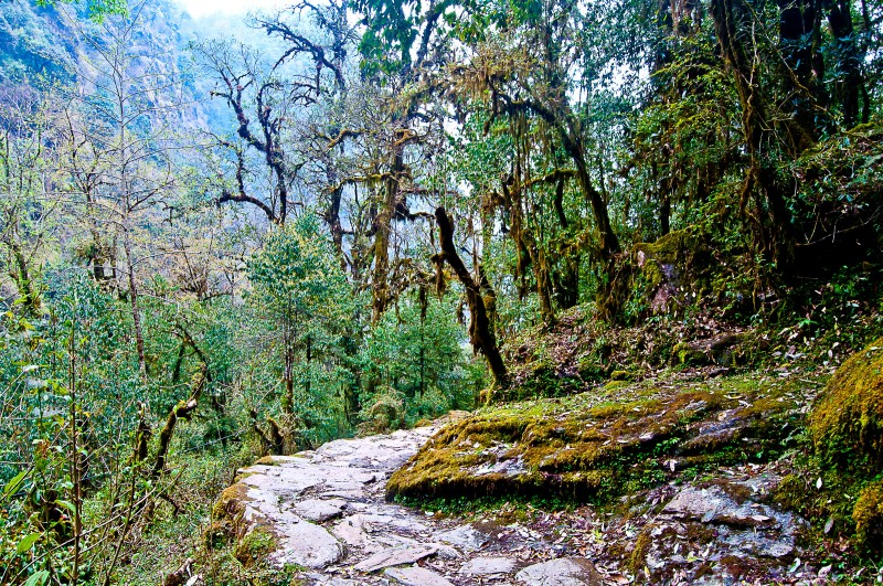2017_Annapurna_07