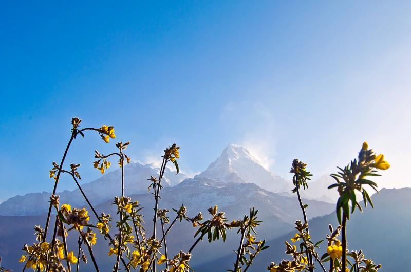 2017_Annapurna_33