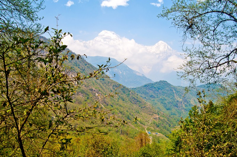 2017_Annapurna_47