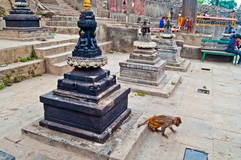 2017_nepal_21